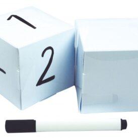 2 blanco dobbelstenen + marker